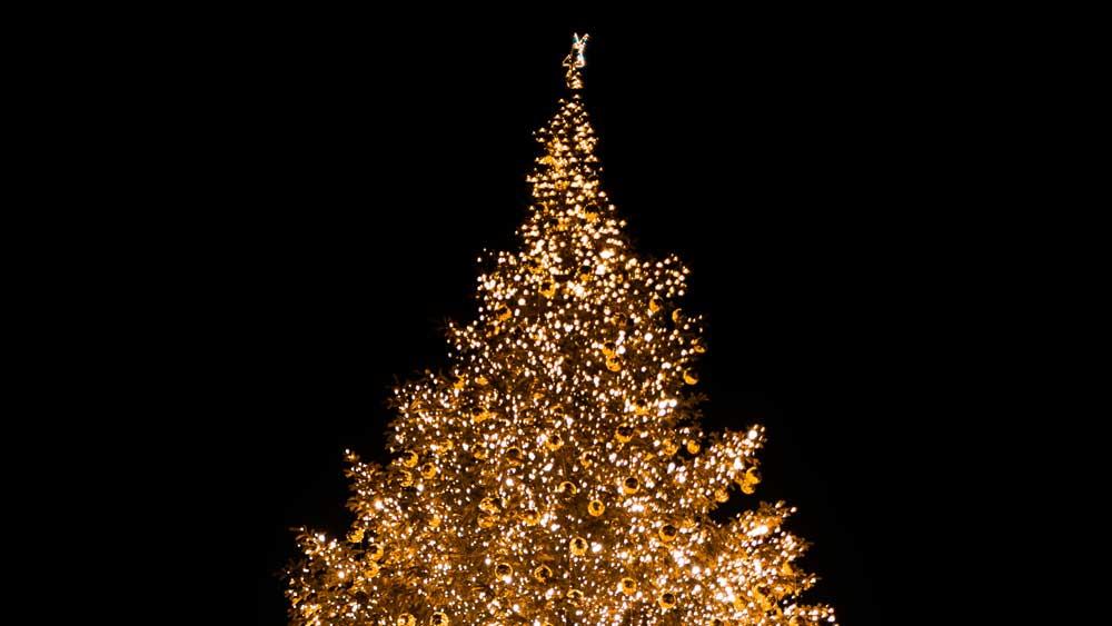 Christmas Lights AGM