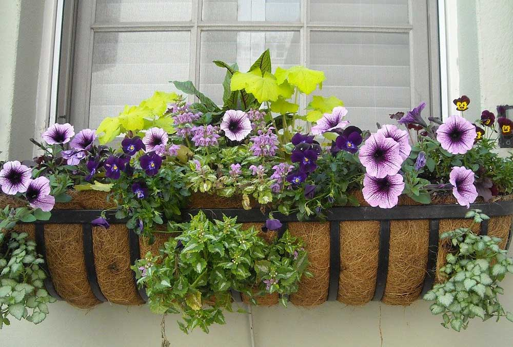 Painting & Flower Grants